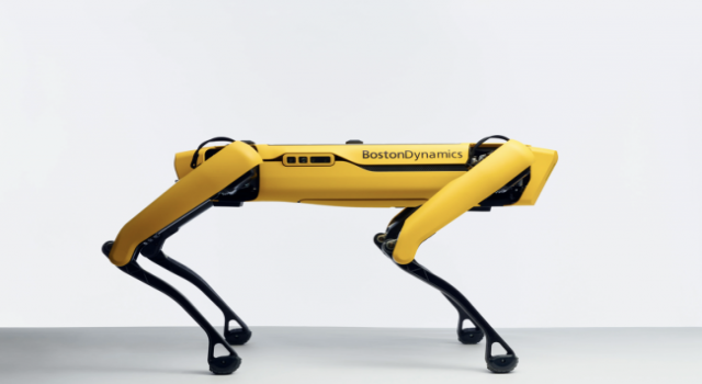 Yeni 'Kâşif' Robot Köpek Satışta