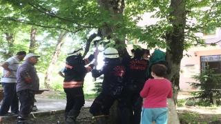 Evinin bahçesinde oynarken bacağı ağacın gövdesine sıkışan kız çocuğu kurtarıldı