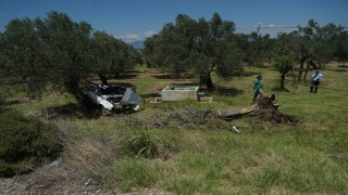 Ağaca çarpan otomobildeki 2 kişi vefat etti