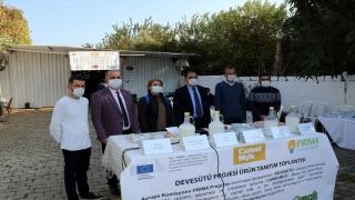 Aydın'da deve sütünden peynir, yoğurt ve ayran yapıldı
