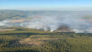 Muğla'nın Kavaklıdere ilçesindeki orman yangınına müdahale sürüyor