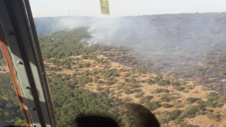GÜNCELLEME Balıkesir'in Savaştepe ilçesinde orman yangını çıktı