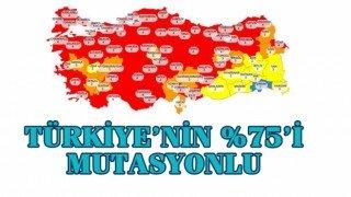 Sağlık Bakanı Koca: Mutasyonun Türkiye'deki oranı şu anda yüzde 75'lere ulaştı