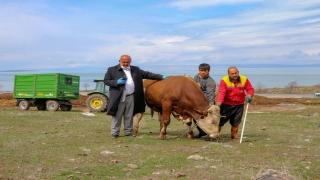 """Vanlı çiftçi büyükbaş hayvanını """"Milli Dayanışma Kampanyası""""na bağışladı"""