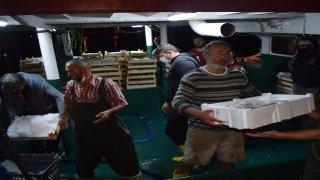 Balıkçılar binlerce palamutla döndü