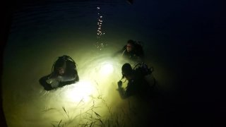 Samsun'da gölete düşen kişi kayboldu